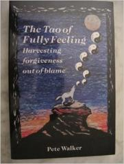 Cover of The Tao of fully feeling.